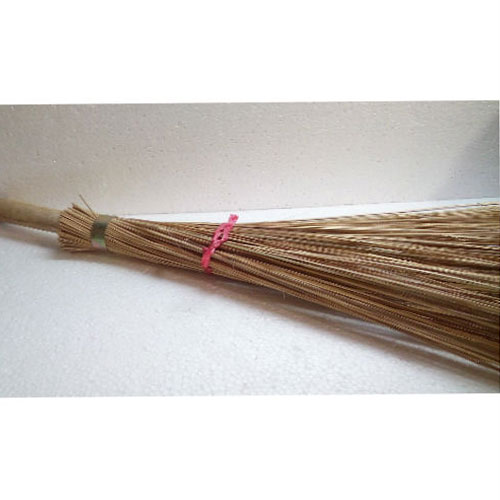 Street Broom Without Stick